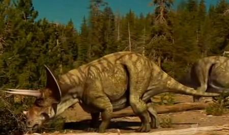 Triceratops: reptile à trois cornes