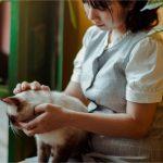 Savez-vous vraiment comment bien s'occuper d'un chat ?