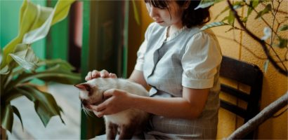 comment prendre soin de son chatton